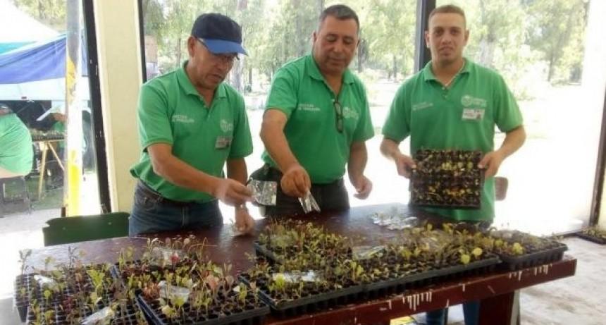 Producción cerró la semana entregando bandejas hortícolas y semillas